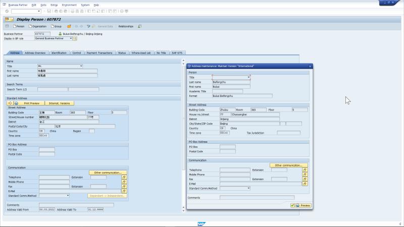 SAP Business Partner Screenshot, Chinese to latin